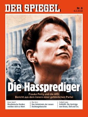 """Schweizer NZZ geißelt das """"journalistische Wuttheater"""" gegen die AfD"""